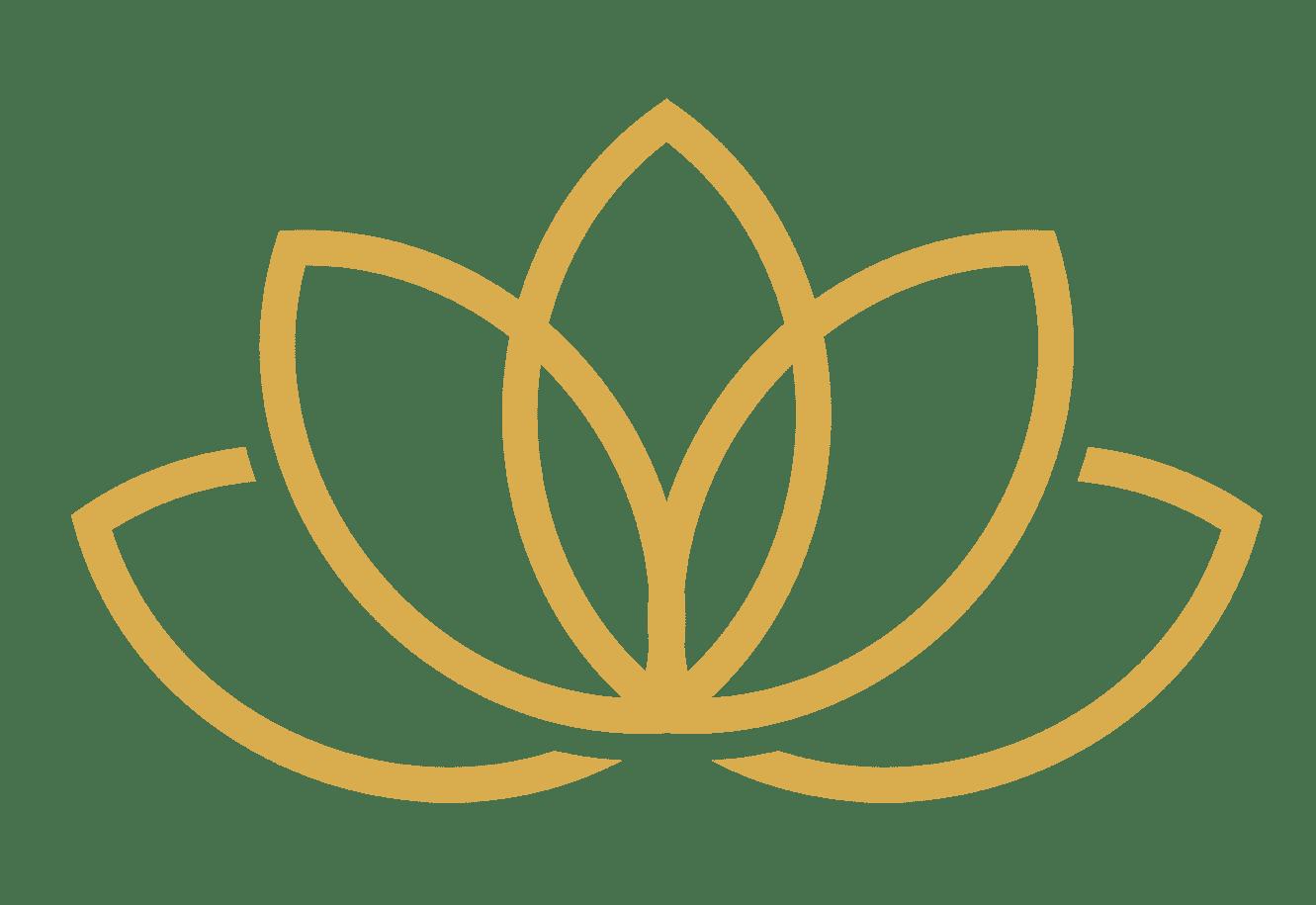 lotus-gradient3
